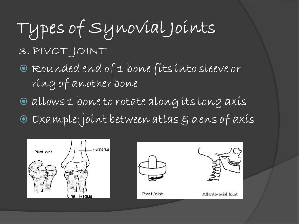 Types of Synovial Joints 3.