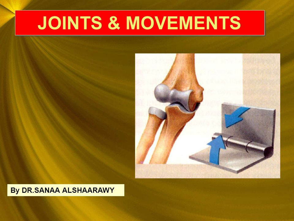 JOINTS & MOVEMENTS JOINTS & MOVEMENTS By DR.SANAA ALSHAARAWY