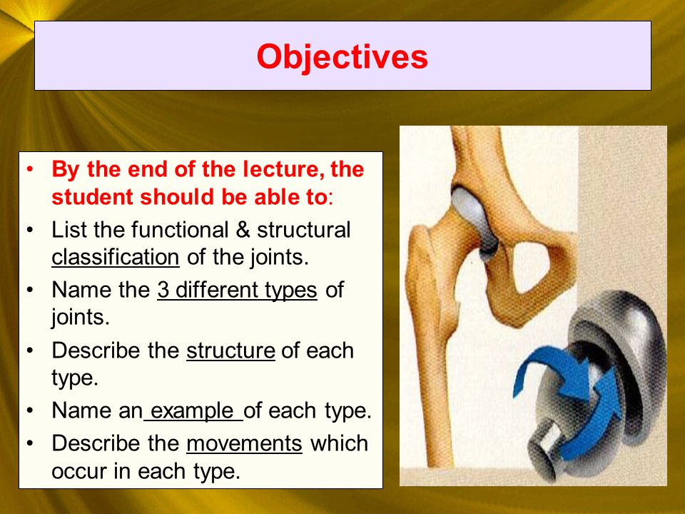 13 FIBROUS JOINTS fibrous joints, fibrous tissue.In fibrous joints, the bones are united by fibrous tissue.
