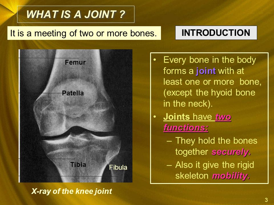 4 CLASSIFICATION Joints could be classified by two ways: According to functionAccording to function Or According to structure.According to structure.
