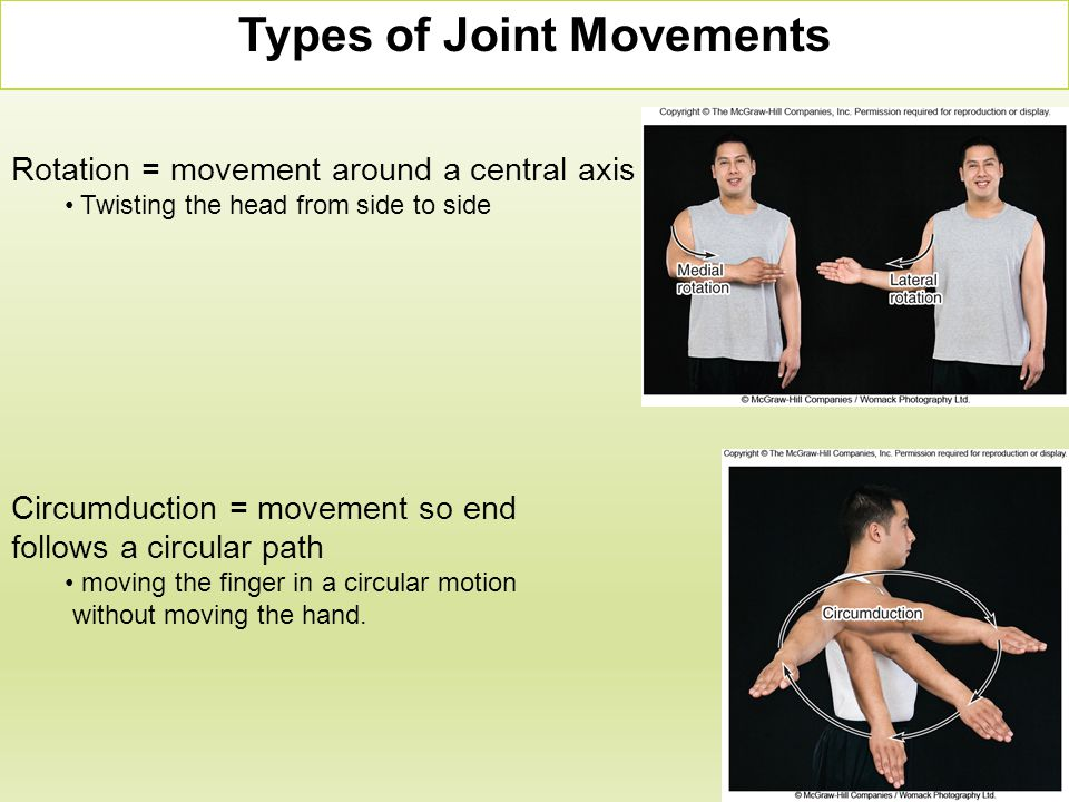 Rotation = movement around a central axis Twisting the head from side to side Circumduction = movement so end follows a circular path moving the finge