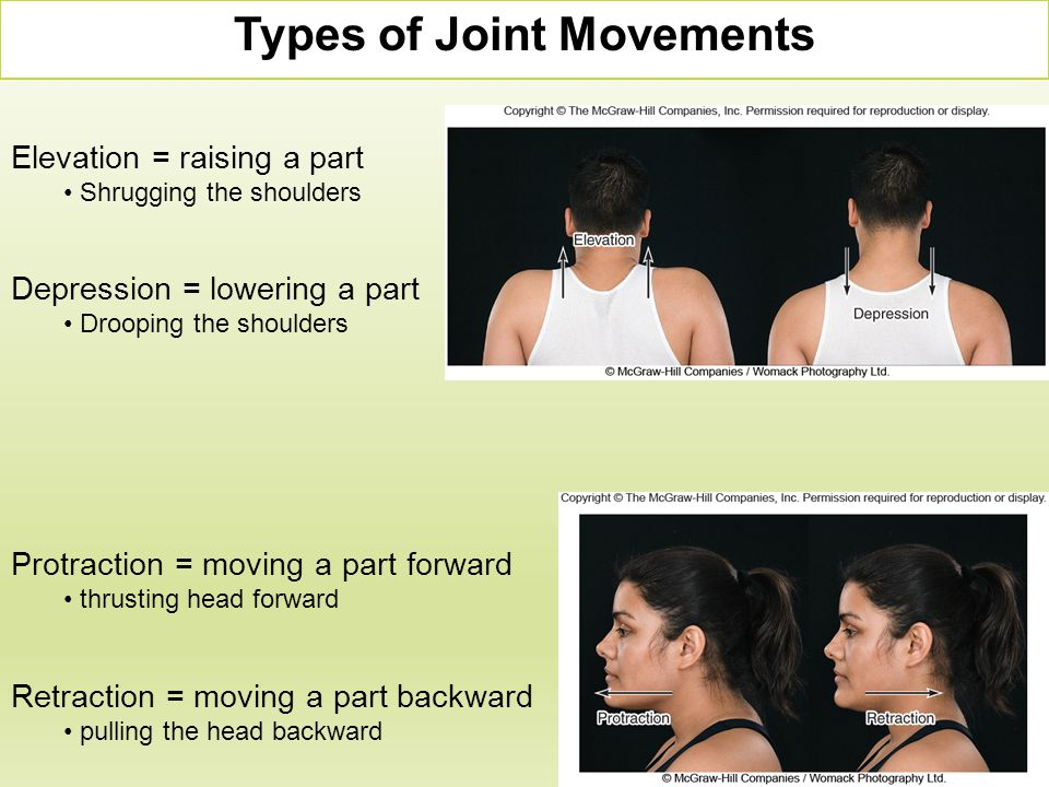 Elevation = raising a part Shrugging the shoulders Depression = lowering a part Drooping the shoulders Types of Joint Movements Protraction = moving a