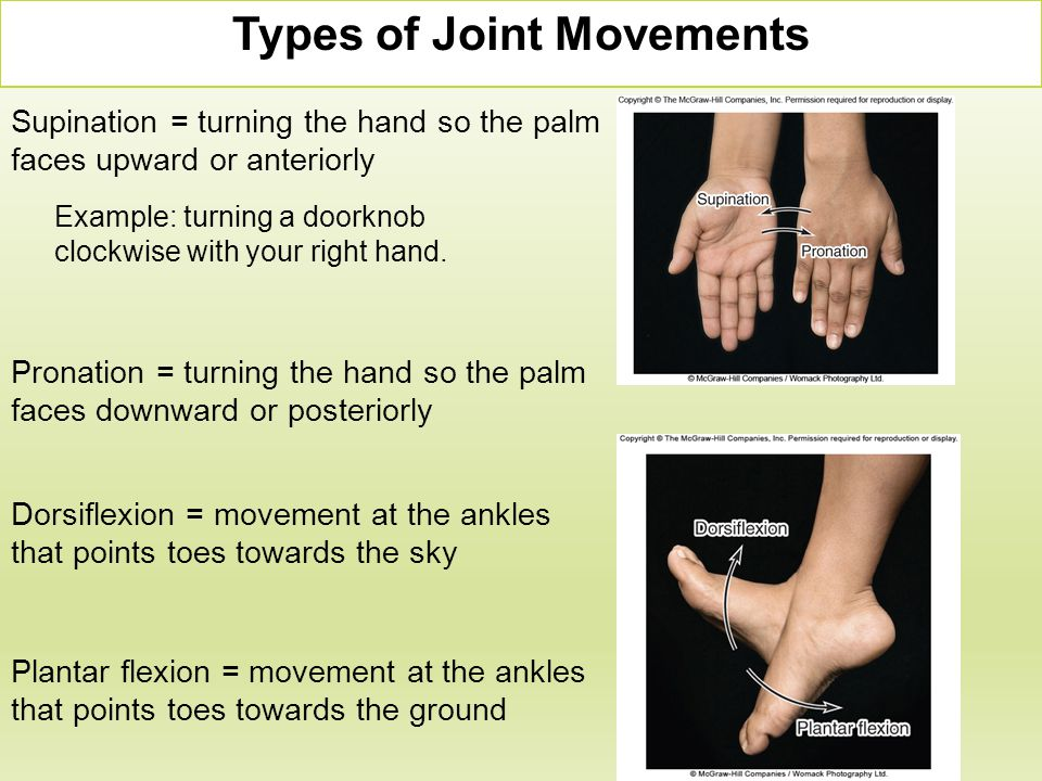 Supination = turning the hand so the palm faces upward or anteriorly Pronation = turning the hand so the palm faces downward or posteriorly Types of J