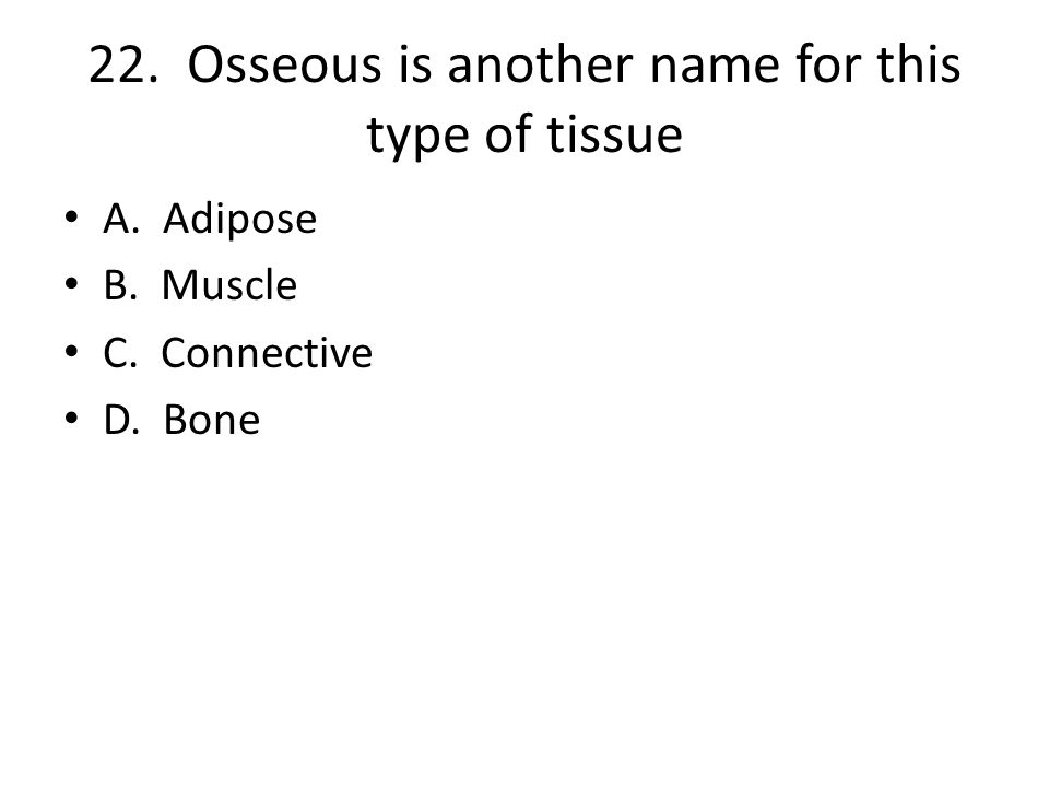 22. Osseous is another name for this type of tissue A. Adipose B. Muscle C. Connective D. Bone