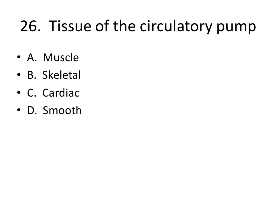 26. Tissue of the circulatory pump A. Muscle B. Skeletal C. Cardiac D. Smooth