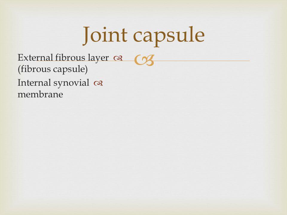  Joint capsule  External fibrous layer (fibrous capsule)  Internal synovial membrane