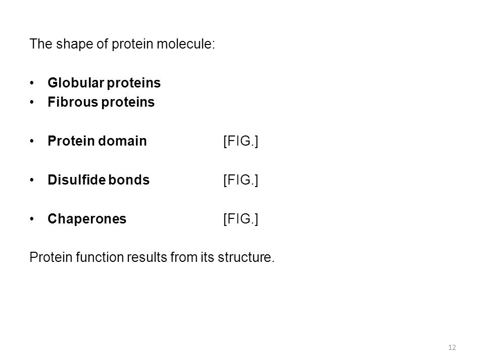 The shape of protein molecule: Globular proteins Fibrous proteins Protein domain[FIG.] Disulfide bonds[FIG.] Chaperones[FIG.] Protein function results from its structure.