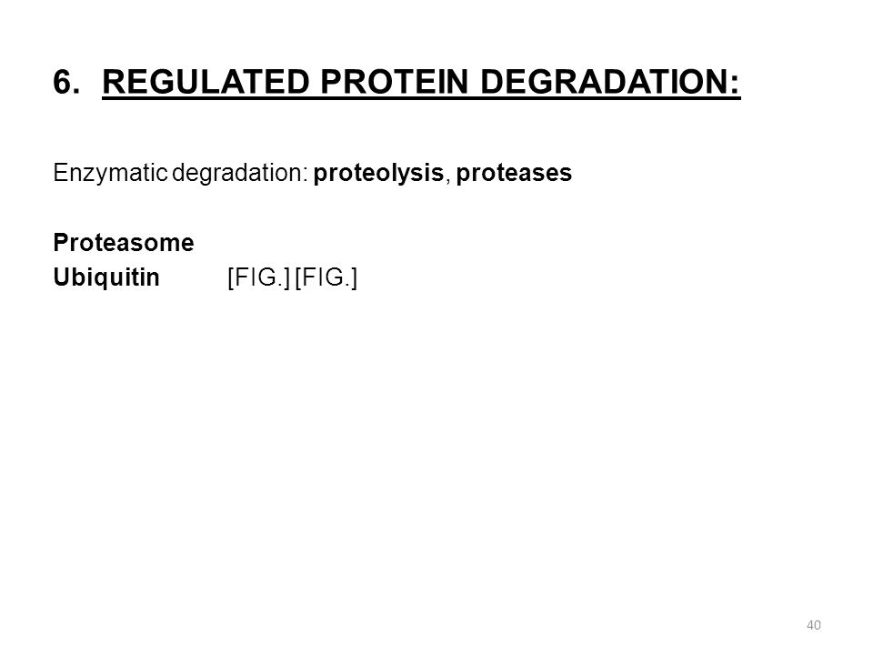 6.REGULATED PROTEIN DEGRADATION: Enzymatic degradation: proteolysis, proteases Proteasome Ubiquitin[FIG.] [FIG.] 40