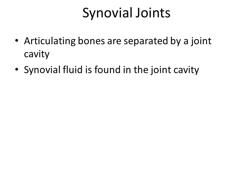 Synovial Joints Articulating bones are separated by a joint cavity Synovial fluid is found in the joint cavity
