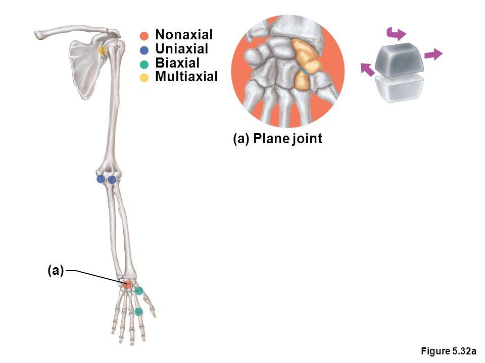 Figure 5.32a Nonaxial Uniaxial Biaxial Multiaxial (a) Plane joint (a)