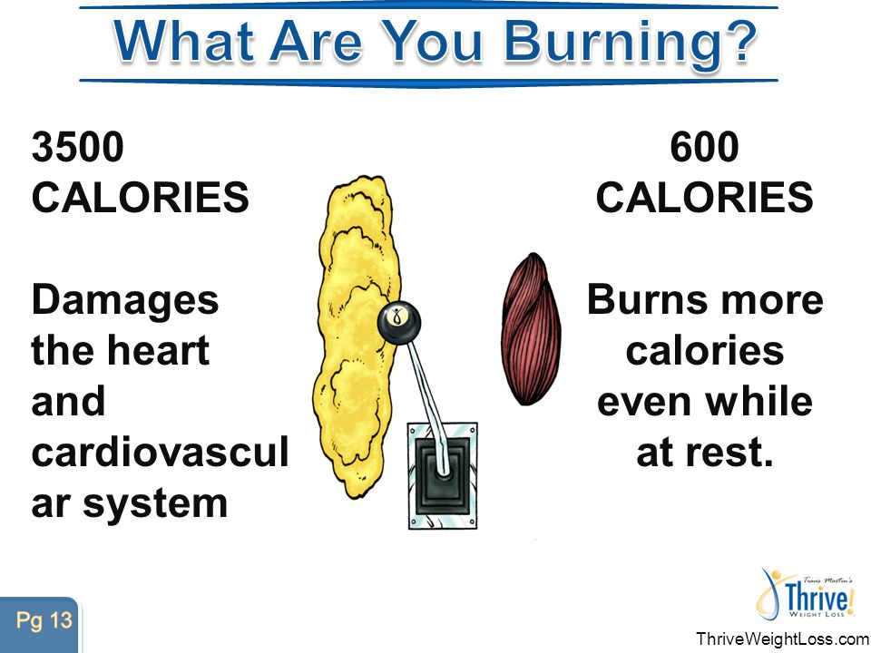 ThriveWeightLoss.com 600 CALORIES 600 CALORIES Burns more calories even while at rest.