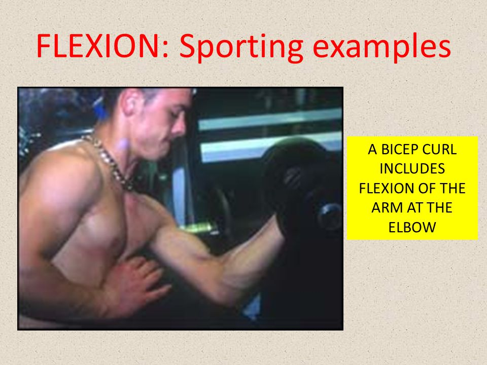FLEXION: Sporting examples A BICEP CURL INCLUDES FLEXION OF THE ARM AT THE ELBOW