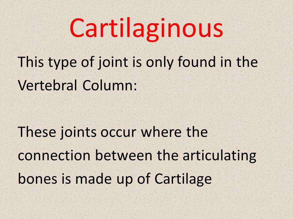 Cartilaginous This type of joint is only found in the Vertebral Column: These joints occur where the connection between the articulating bones is made