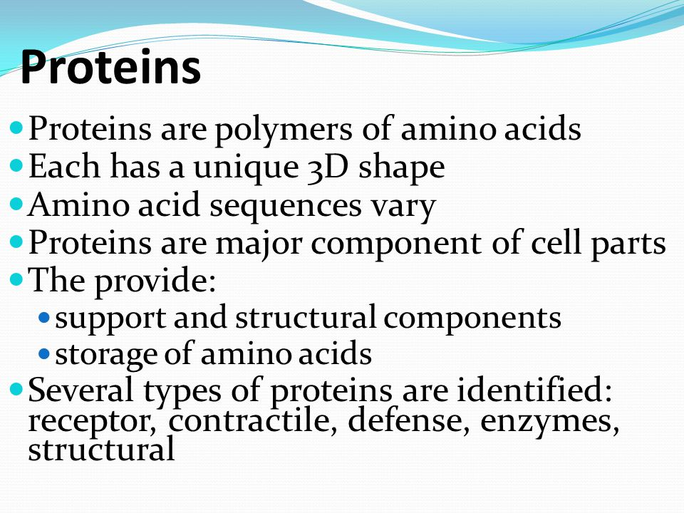 Proteins Proteins are polymers of amino acids Each has a unique 3D shape Amino acid sequences vary Proteins are major component of cell parts The prov