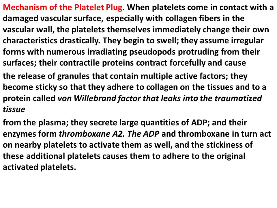Mechanism of the Platelet Plug.