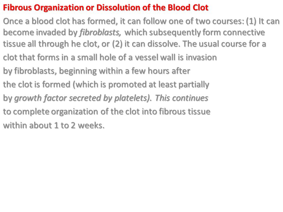 Fibrous Organization or Dissolution of the Blood Clot Once a blood clot has formed, it can follow one of two courses: (1) It can become invaded by fibroblasts, which subsequently form connective tissue all through he clot, or (2) it can dissolve.