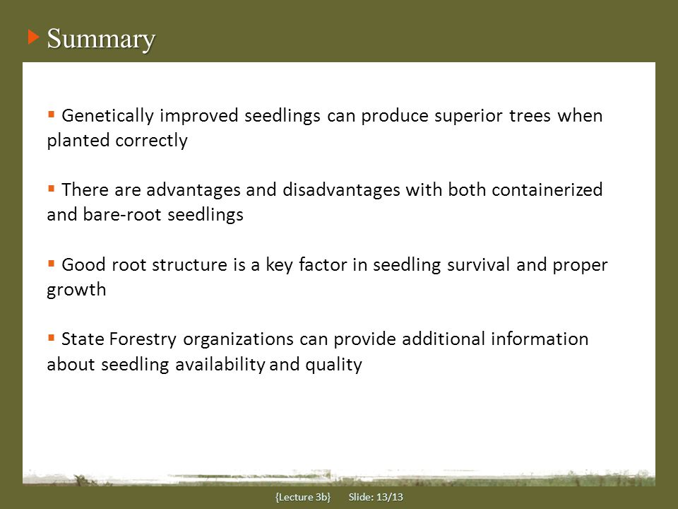 Summary {Lecture 3b} Slide: 13/13  Genetically improved seedlings can produce superior trees when planted correctly  There are advantages and disadvantages with both containerized and bare-root seedlings  Good root structure is a key factor in seedling survival and proper growth  State Forestry organizations can provide additional information about seedling availability and quality