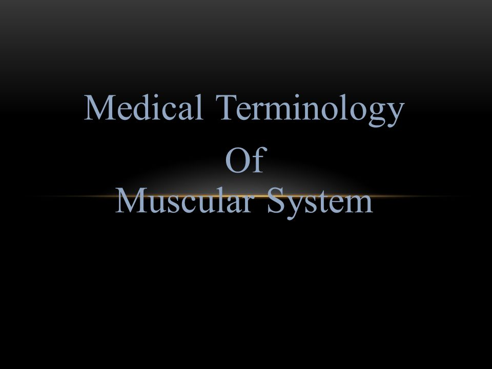 Medical Terminology Of Muscular System