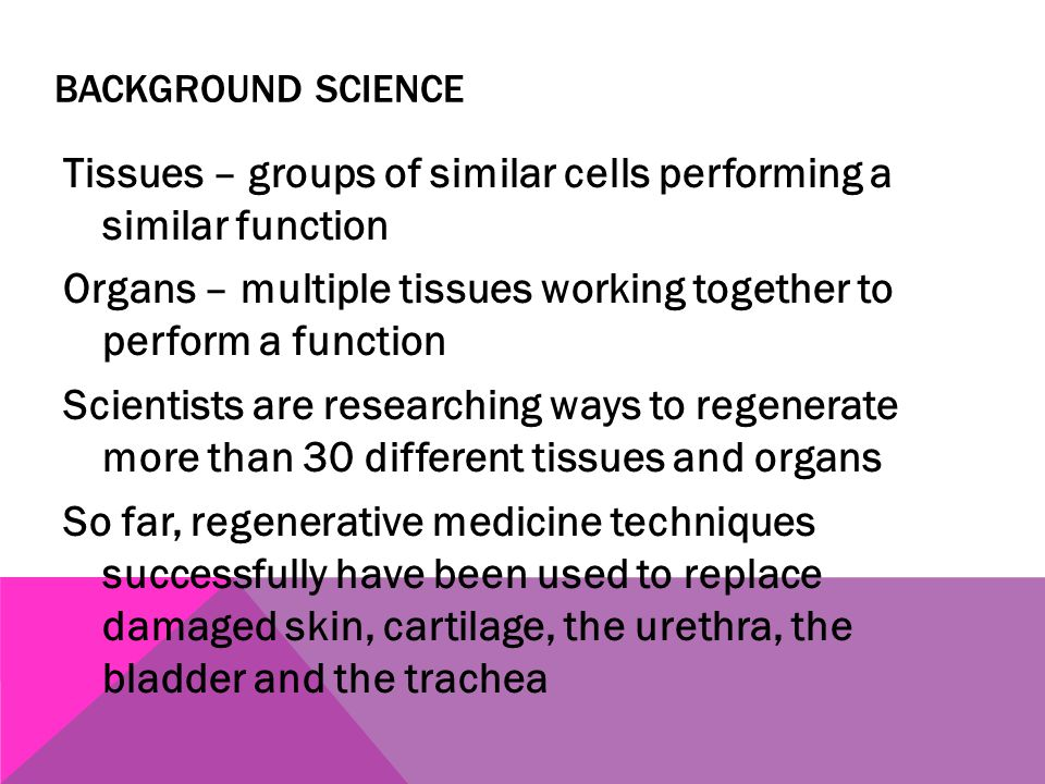 BACKGROUND SCIENCE Tissues – groups of similar cells performing a similar function Organs – multiple tissues working together to perform a function Sc
