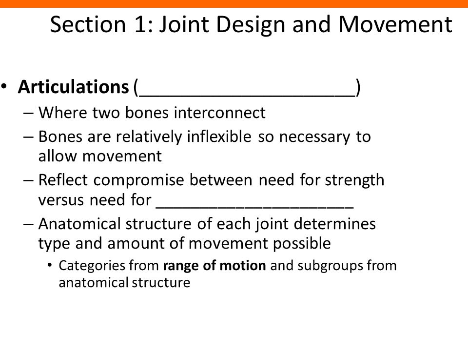Section 1: Joint Design and Movement Articulations (_____________________) – Where two bones interconnect – Bones are relatively inflexible so necessa