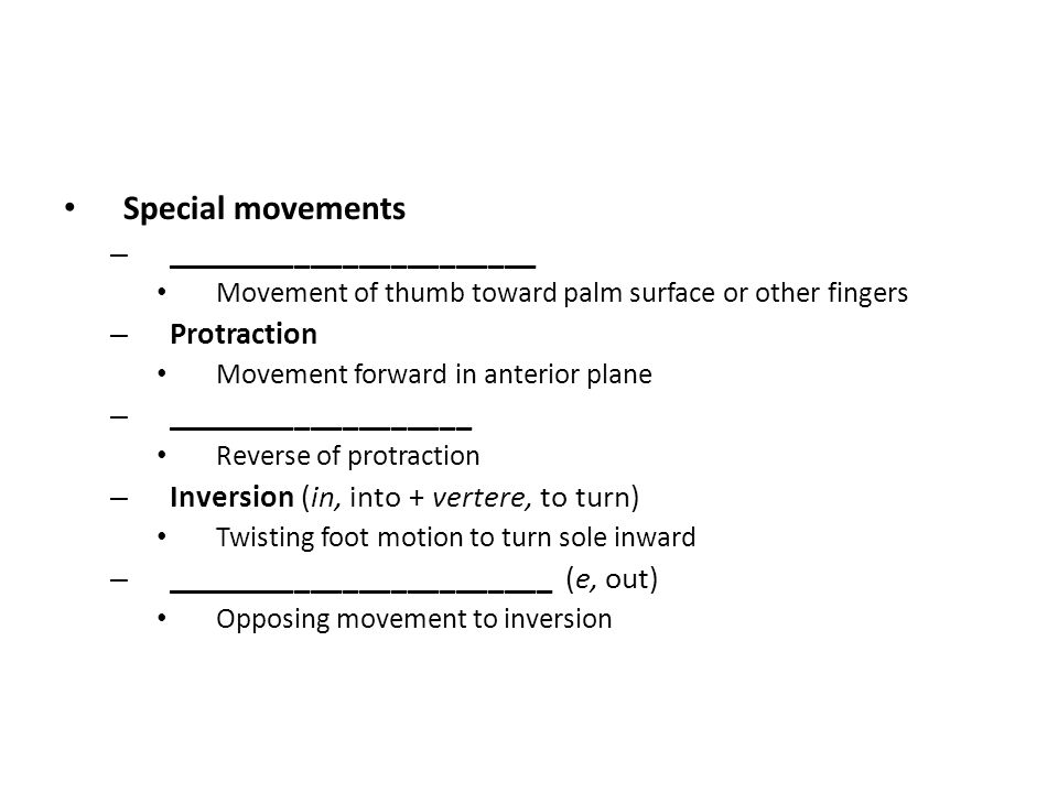 Special movements – _______________________ Movement of thumb toward palm surface or other fingers – Protraction Movement forward in anterior plane –