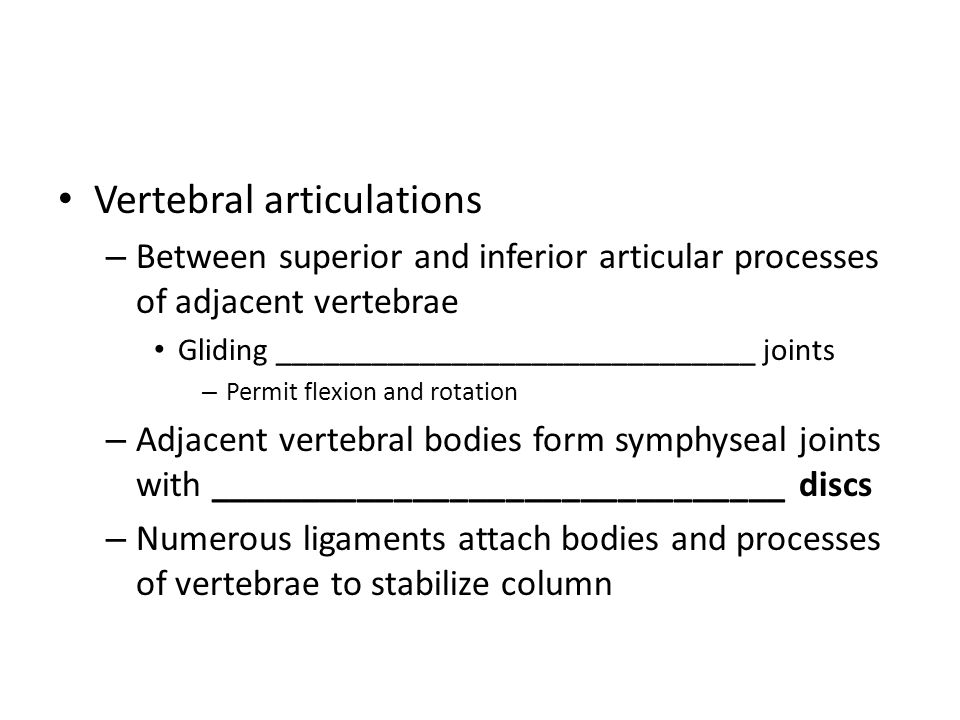 Vertebral articulations – Between superior and inferior articular processes of adjacent vertebrae Gliding ______________________________ joints – Perm