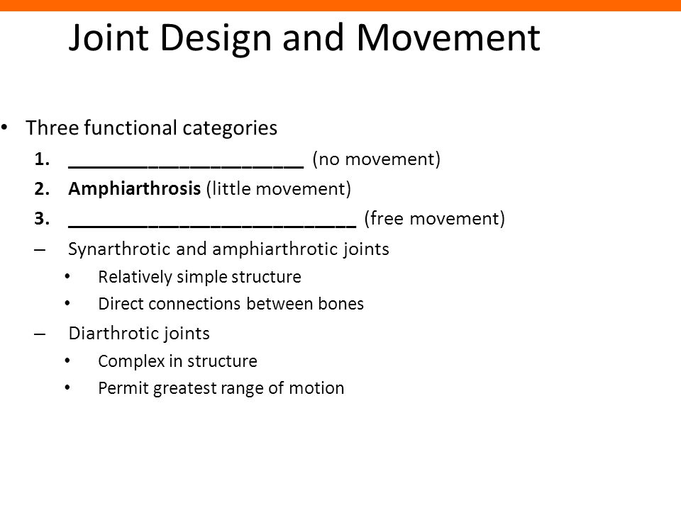 Joint Design and Movement Three functional categories 1._______________________ (no movement) 2.Amphiarthrosis (little movement) 3.___________________