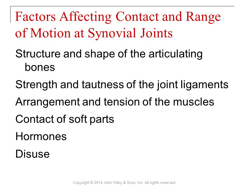 Structure and shape of the articulating bones Strength and tautness of the joint ligaments Arrangement and tension of the muscles Contact of soft part