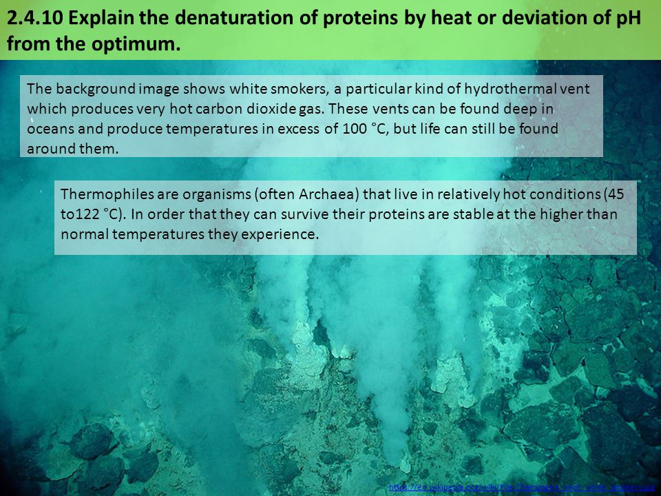 Thermophiles are organisms (often Archaea) that live in relatively hot conditions (45 to122 °C).