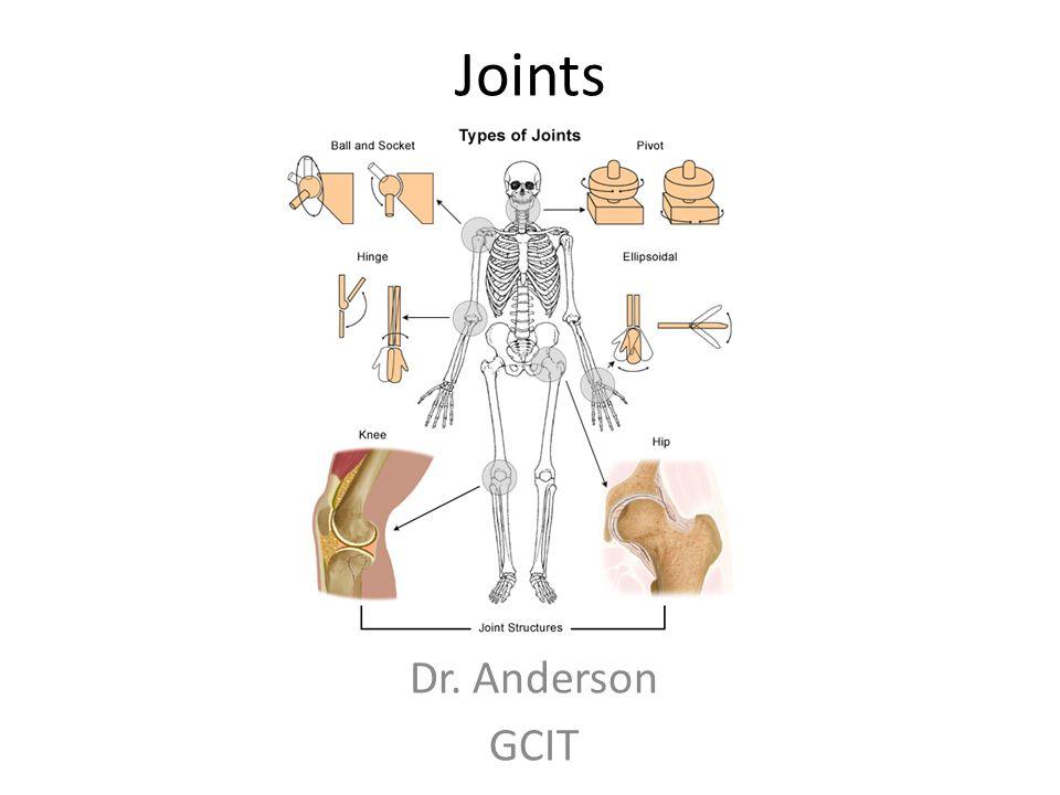 Joints Dr. Anderson GCIT