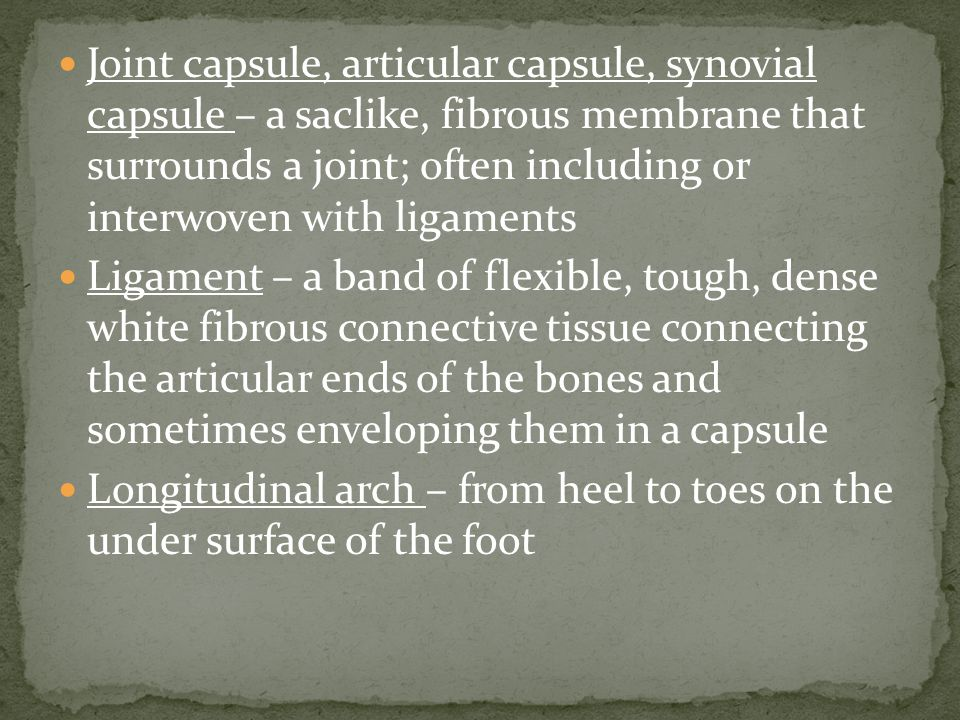 Joint capsule, articular capsule, synovial capsule – a saclike, fibrous membrane that surrounds a joint; often including or interwoven with ligaments Ligament – a band of flexible, tough, dense white fibrous connective tissue connecting the articular ends of the bones and sometimes enveloping them in a capsule Longitudinal arch – from heel to toes on the under surface of the foot