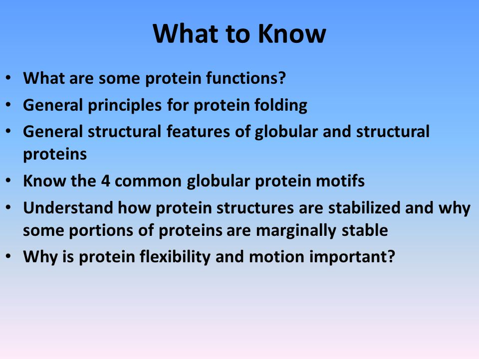 What to Know What are some protein functions.