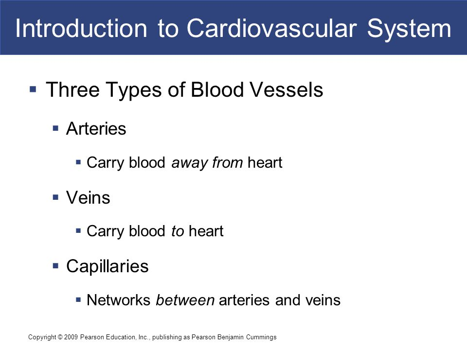 Copyright © 2009 Pearson Education, Inc., publishing as Pearson Benjamin Cummings Introduction to Cardiovascular System  Three Types of Blood Vessels
