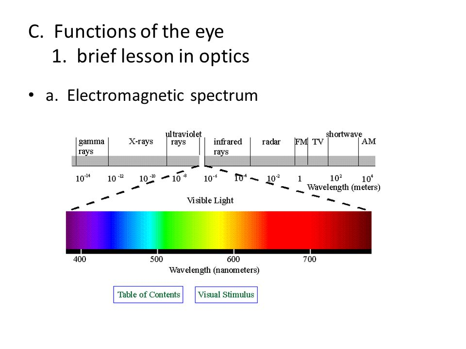 C. Functions of the eye 1. brief lesson in optics a. Electromagnetic spectrum