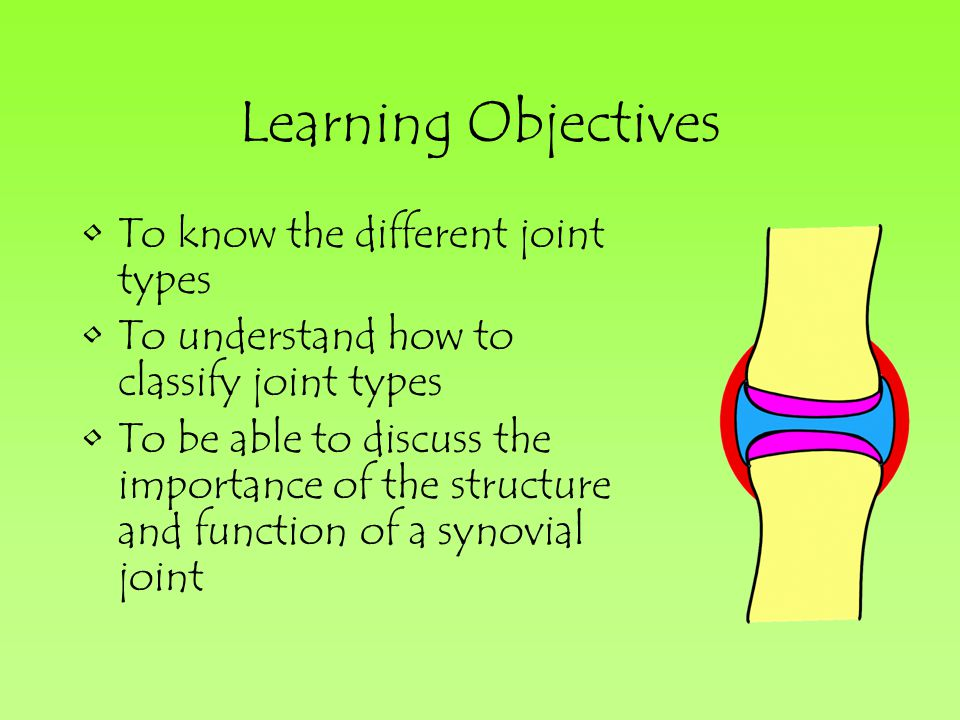 Learning Objectives To know the different joint types To understand how to classify joint types To be able to discuss the importance of the structure