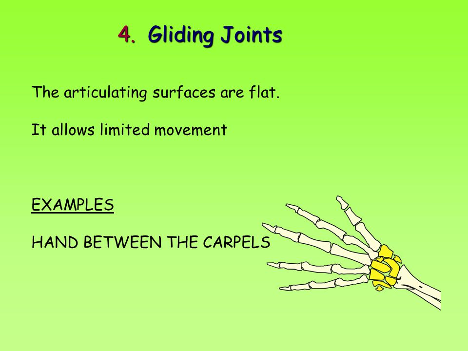 4. Gliding Joints The articulating surfaces are flat. It allows limited movement EXAMPLES HAND BETWEEN THE CARPELS