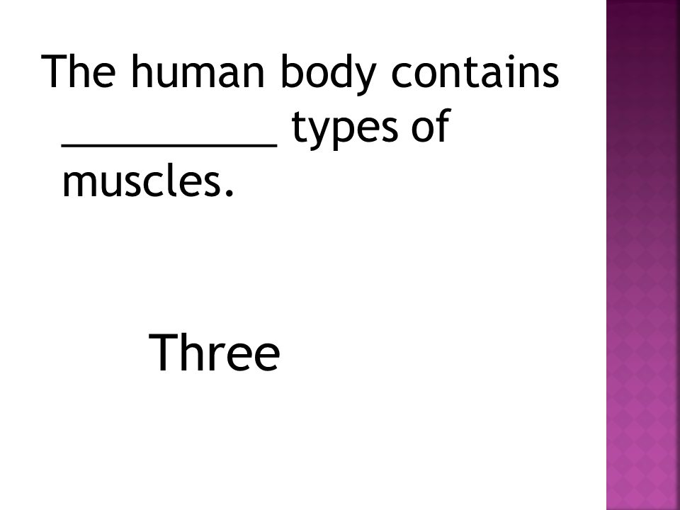 The human body contains _________ types of muscles. Three