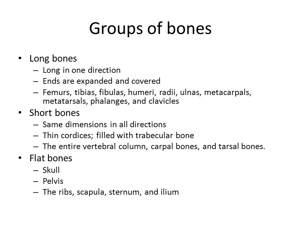 Groups of bones Long bones – Long in one direction – Ends are expanded and covered – Femurs, tibias, fibulas, humeri, radii, ulnas, metacarpals, metatarsals, phalanges, and clavicles Short bones – Same dimensions in all directions – Thin cordices; filled with trabecular bone – The entire vertebral column, carpal bones, and tarsal bones.