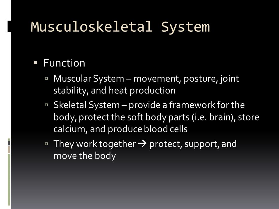 Musculoskeletal System  Joints (articulations)  Hold bones together  articular cartilage  smooth layer of firm, fibrous tissue covering the contacting surface of joints  meniscus  crescent-shaped cartilage found in the knee  intervertebral disk  cartilaginous pad found between the vertebrae in the spine  pubic symphysis  cartilaginous joint at which two pubic bones come together