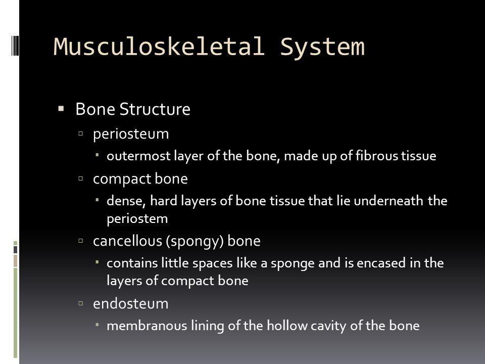 Word Parts for Joints Combining FormDefinition  aponeur/o  arthr/o  burs/o  chondr/o  disk/o  menisc/o  synovi/o  ten/o, tend/o, tendin/o  aponeurosis  joint  bursa (cavity)  cartilage  intervertebral disk  meniscus (crescent)  synovia, synovial membrane  tendon