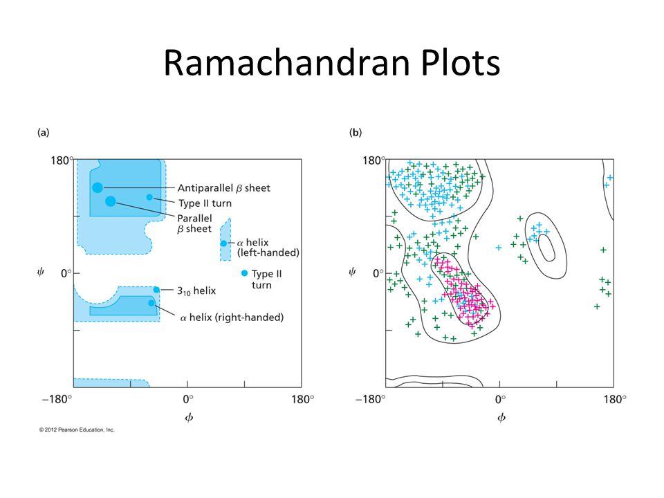 Ramachandran Plots