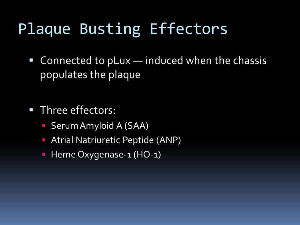  Connected to pLux — induced when the chassis populates the plaque  Three effectors:  Serum Amyloid A (SAA)  Atrial Natriuretic Peptide (ANP)  Heme Oxygenase-1 (HO-1) Plaque Busting Effectors