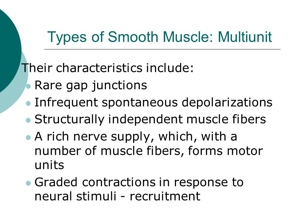 Types of Smooth Muscle: Multiunit  Their characteristics include: Rare gap junctions Infrequent spontaneous depolarizations Structurally independent muscle fibers A rich nerve supply, which, with a number of muscle fibers, forms motor units Graded contractions in response to neural stimuli - recruitment
