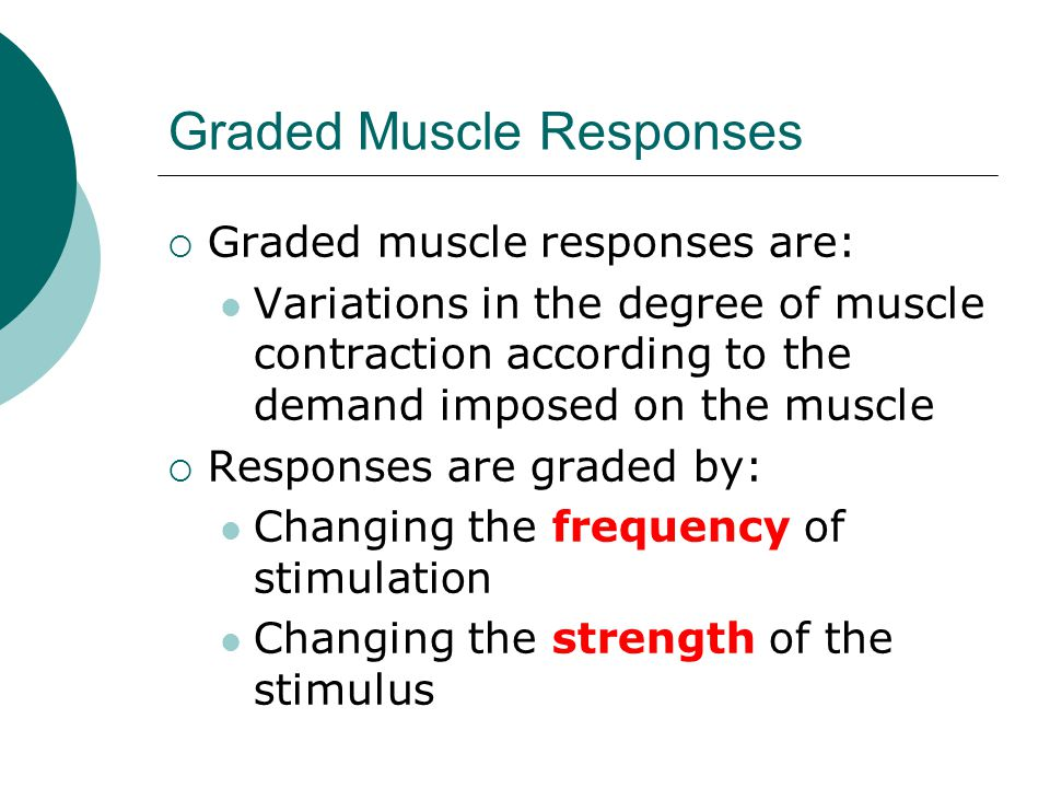 Graded Muscle Responses  Graded muscle responses are: Variations in the degree of muscle contraction according to the demand imposed on the muscle  Responses are graded by: Changing the frequency of stimulation Changing the strength of the stimulus