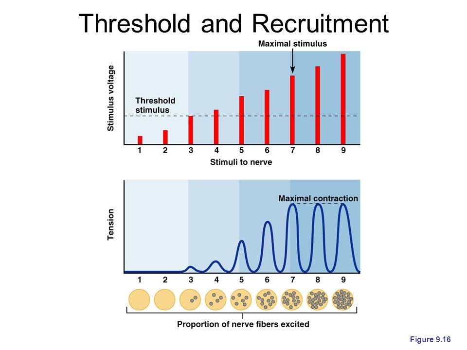 Threshold and Recruitment Figure 9.16