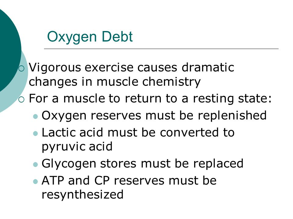 Oxygen Debt  Vigorous exercise causes dramatic changes in muscle chemistry  For a muscle to return to a resting state: Oxygen reserves must be replenished Lactic acid must be converted to pyruvic acid Glycogen stores must be replaced ATP and CP reserves must be resynthesized