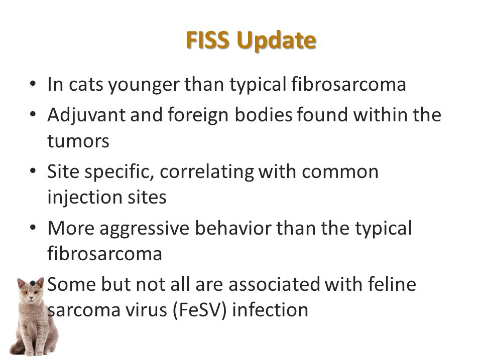 In cats younger than typical fibrosarcoma Adjuvant and foreign bodies found within the tumors Site specific, correlating with common injection sites More aggressive behavior than the typical fibrosarcoma Some but not all are associated with feline sarcoma virus (FeSV) infection FISS Update