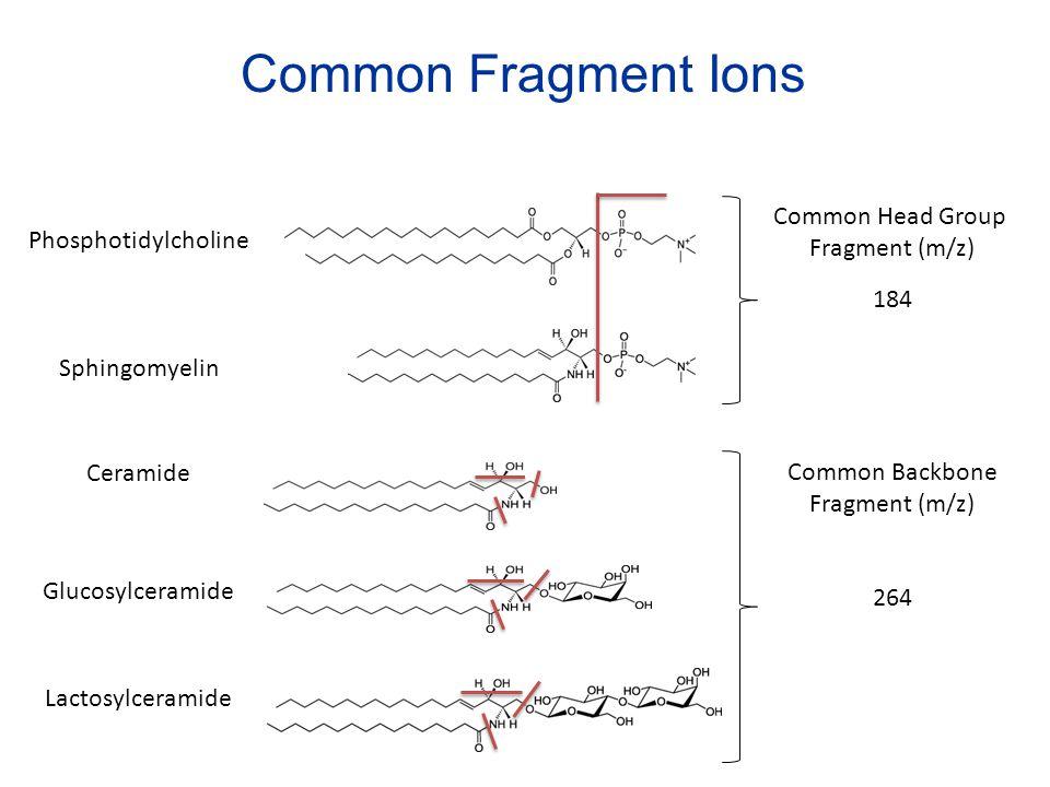 Phosphotidylcholine Ceramide Sphingomyelin Glucosylceramide Lactosylceramide 184 264 Common Fragment Ions Common Head Group Fragment (m/z) Common Back
