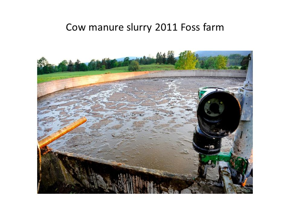 Cow manure slurry -Great NH3- emission after spreading at fields -Difficult to utilize in high populated area -Demage soil structure -Conserve weed seeds and patogen spores -Impossible to spread exactly +Cost efficent way to spread on fields