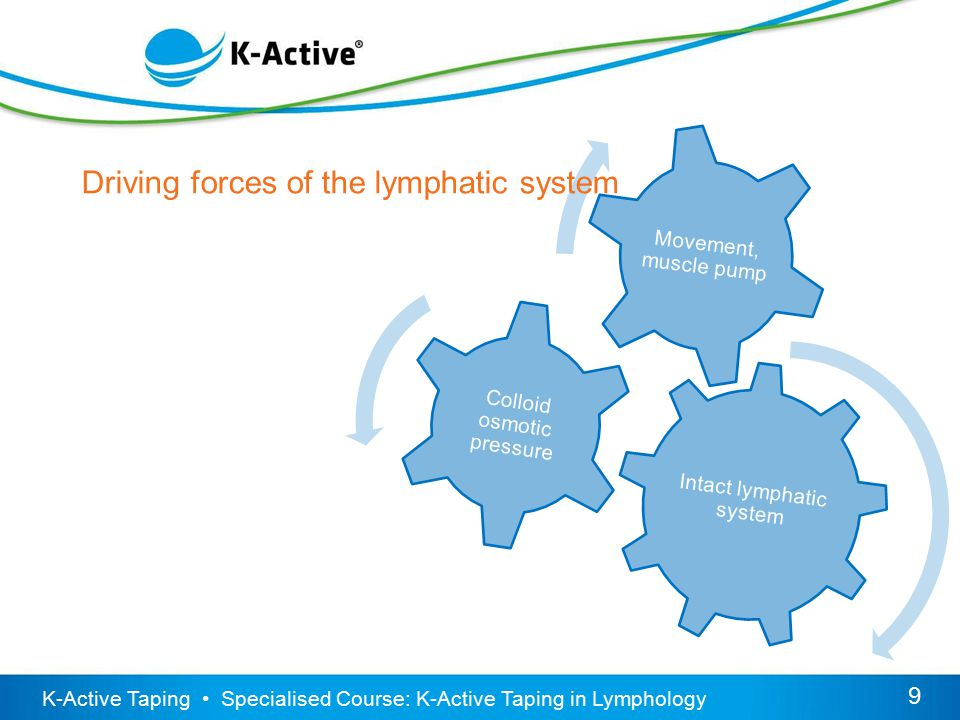 KINESIOLOGISCHES TAPING VON K-ACTIVE – FÜHREND IN EUROPA Grundkurs 9 9 K-Active Taping Specialised Course: K-Active Taping in Lymphology Intact lymphatic system Colloid osmotic pressure Movement, muscle pump Driving forces of the lymphatic system